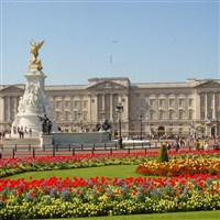 20 Buckingham Palace and Afternoon Tea